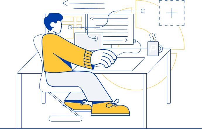 performer illustrazione pa sviluppo software